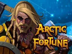 Arctic Fortune W88